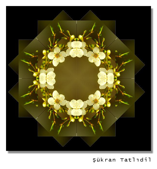 Sukran3.jpg